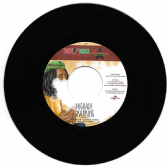 Mr. Williamz - Higrade Skanking / Nadine Sutherland - Dance Africa (Nick / Rebel Music / Buy Reggae)